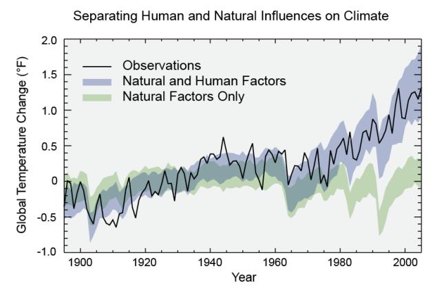 models-observed-human-natural